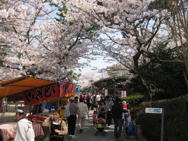 Tokiwa2011041001