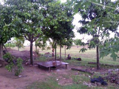Mekong201208124