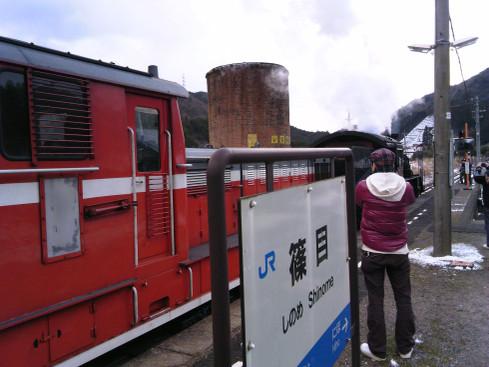 C56160shinome