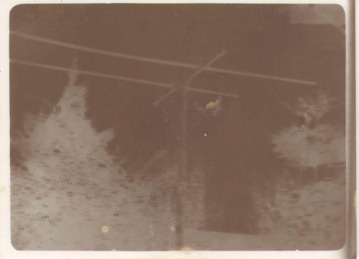 Blackwhite1982nega